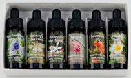 box of 6 Flora of Asia Flower Essences